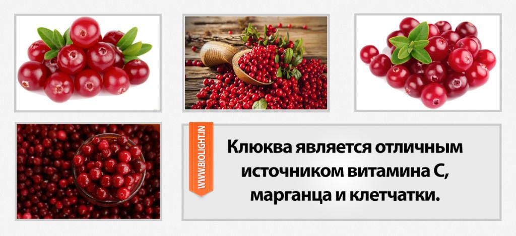 Клюква является отличным источником витамина С, марганца и клетчатки. Клюква богата микроэлементами, в ее составе полифенолы, проантоцианидины, флавонолы и кверцетин.