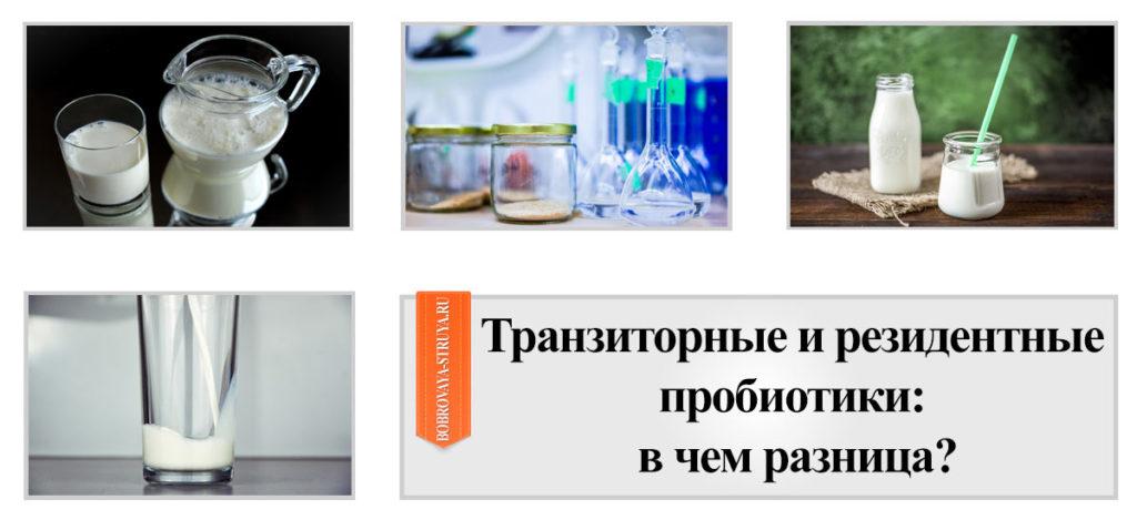 Транзиторные и резидентные пробиотики
